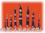 PTYL铁路信号电缆型号