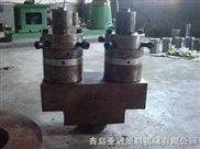 PVC双腔管材模具