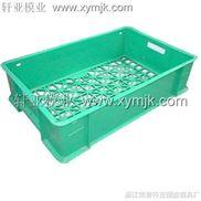 菠萝箱模具